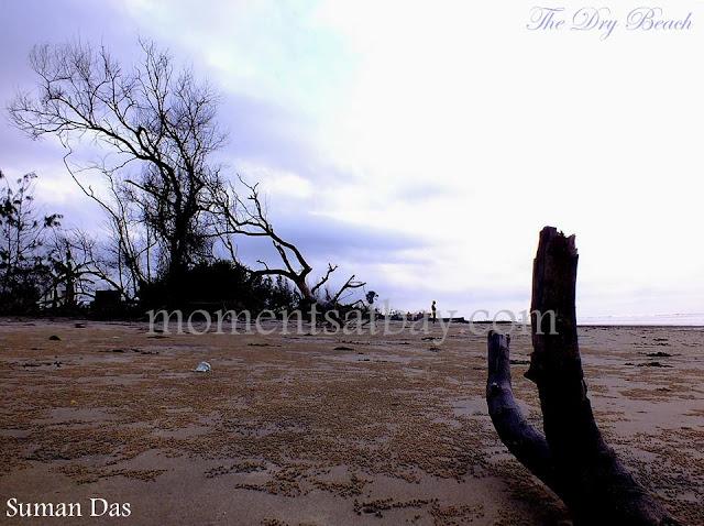 The Dry Beach momentsatbay
