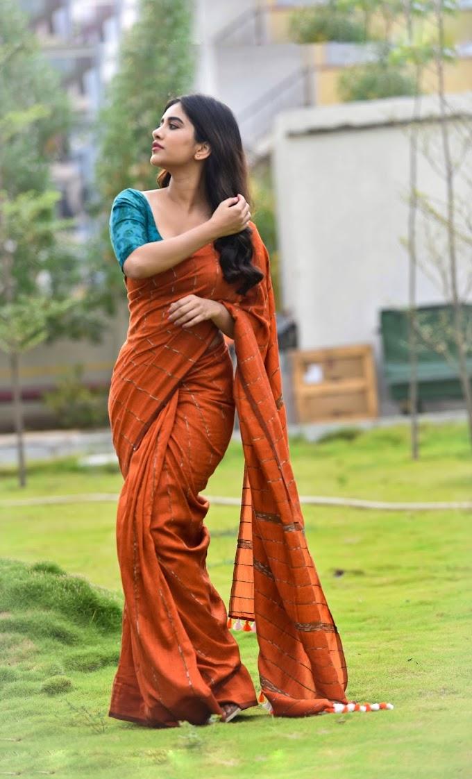 Actress Nabha Natesh Saree Photos