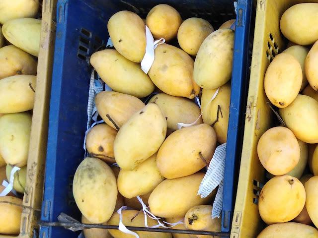 Manghi Gialli Thailandesi