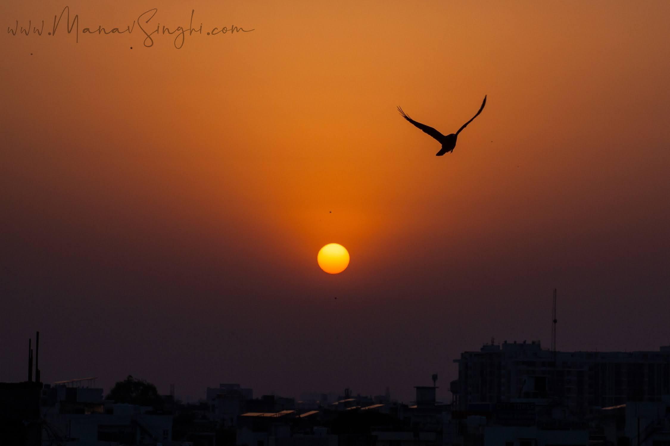 Shots around Sunset taken from my terrace, Jaipur.