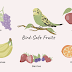 Foods For Bird's Immune System