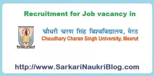 CCS University Meerut Sarkari-Naukri vacancy recruitment