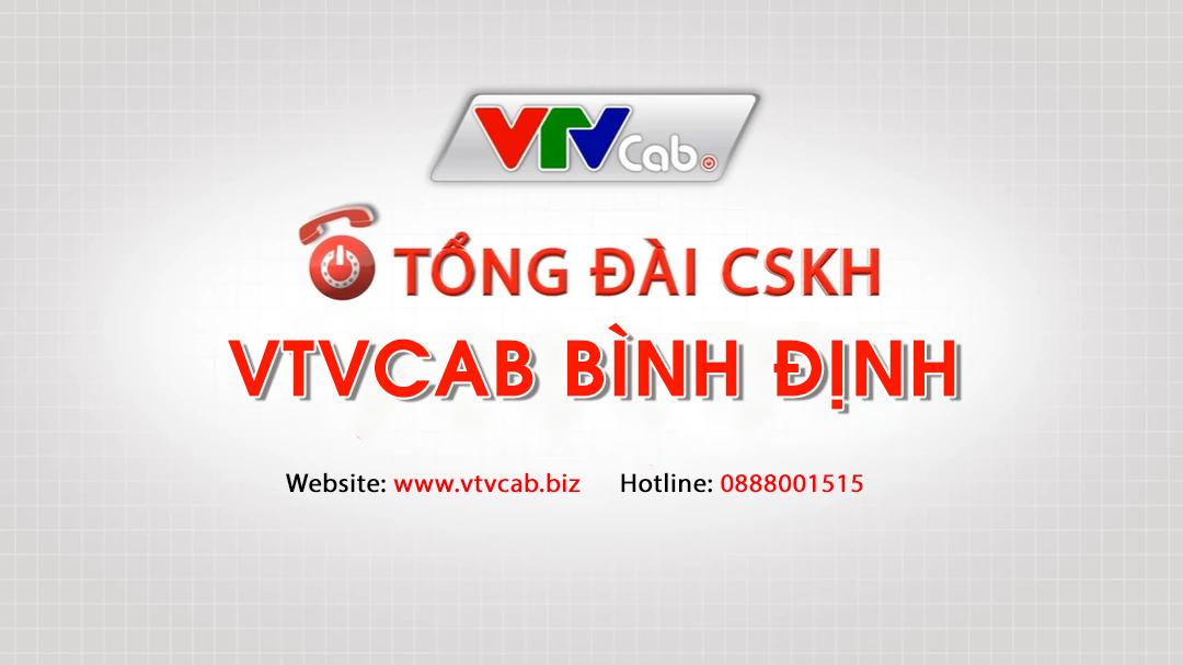VTVCab Bình Định - Chi nhánh truyền hình cáp Việt Nam
