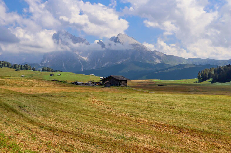 Escursione all'Alpe di Siusi