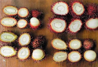 Varian Rambutan