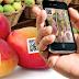 Campanha conscientiza produtores sobre a importância da rastreabilidade vegetal
