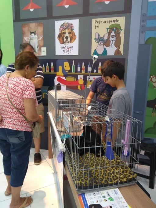 Shopping Parque das Bandeiras realiza Feira de Adoção sábado (15/6)