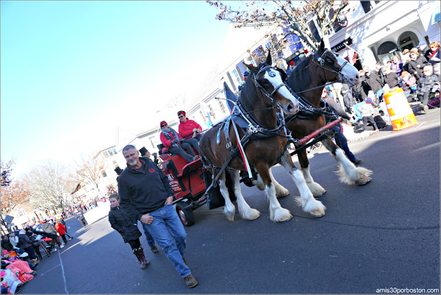 Coche de Caballos en el Desfile de Acción de Gracias de Plymouth