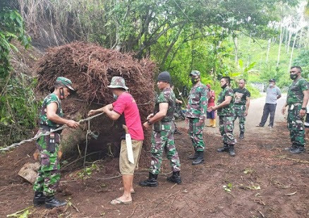 Bentuk Wujud Tanggap Serta Peduli Masyarakat, Babinsa Bantu Warga Terkait Akar Puhon kelapa yang menutupi jalan