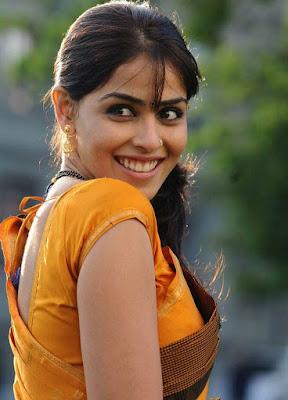 Telugu Movie actress Genelia Dsouza saree stills