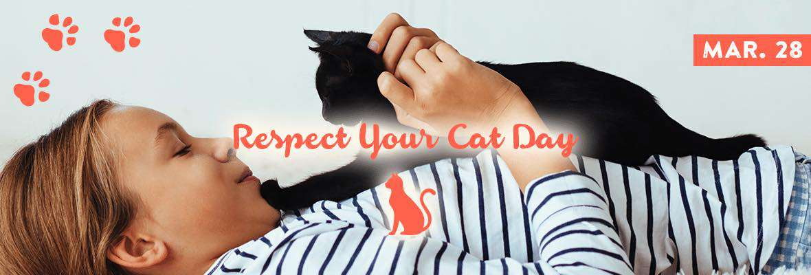 Respect Your Cat Day Wishes Images