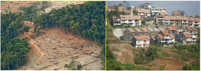 kerusakan pantai oleh pembangunan