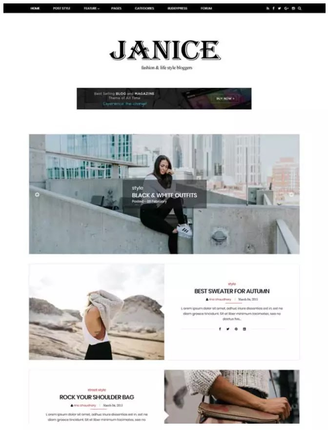 Janice fashion blogger theme