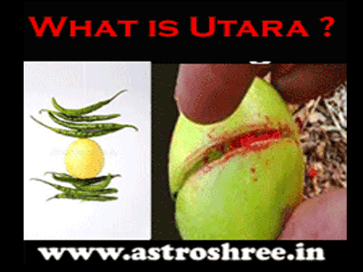 what is utara of black magic by astrologer
