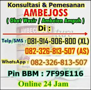 Jual Obat Benjolan Wasir Di Kabupaten Merauke (082326813507)