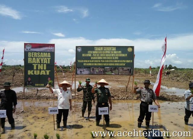 Kodim 0109 Aceh Singkil Gelar Penanaman Padi Serentak