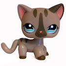 Littlest Pet Shop Multi Pack Cat Shorthair (#1206) Pet