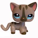 Littlest Pet Shop Multi Pack Cat Shorthair (#1206) Pet