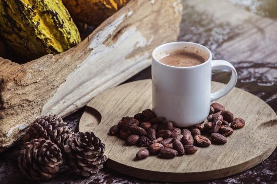 Beneficios de consumir cacao