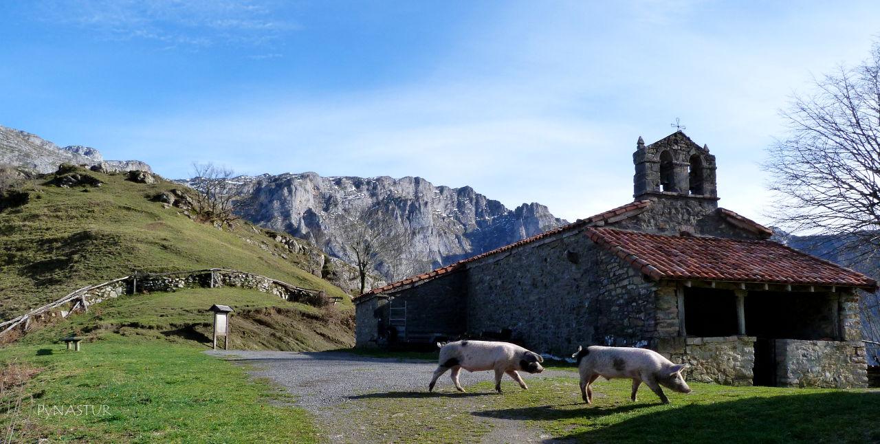 Ermita de Casielles - Parque Natural de Ponga - Asturias