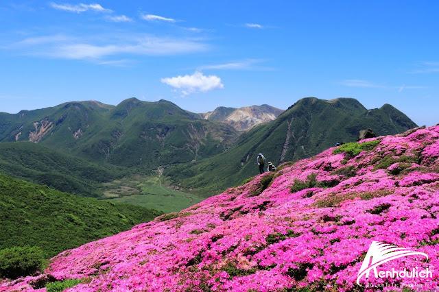 5 địa điểm du lịch tự nhiên ở Nhật Bản