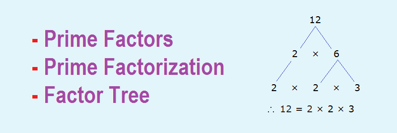 Prime Factors | Prime Factorization | Factor Tree