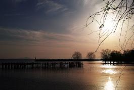 SD Quattro 湖北