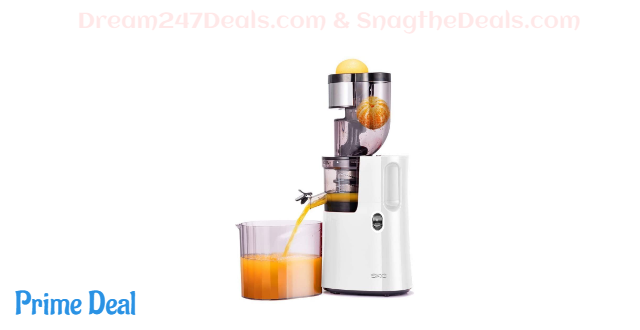 60% off Slow Masticating Juicer Wide Chute