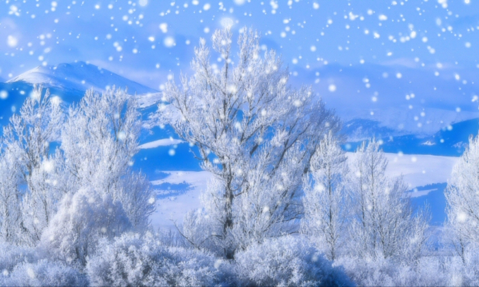 blue clip art frozen