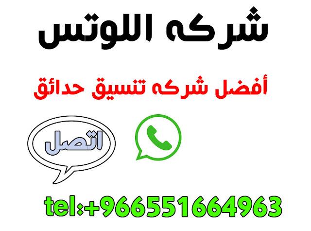 تنسيق حدائق خميس ومشيط وابها بشركه اللوتس افضل شركه تنسيق حدائق باللملكه0551664963
