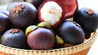 Manfaat Daun Manggis dalam Atasi Kolesterol dan Cegah Kanker