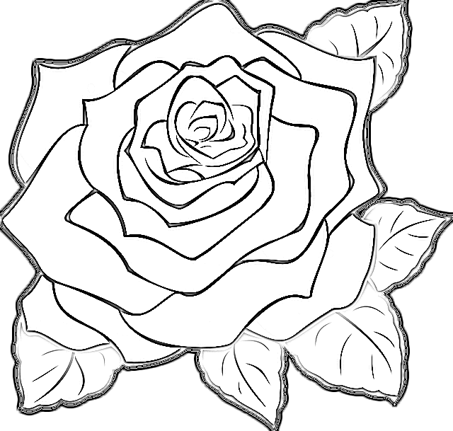 flower design images drawing Photos Download 2020