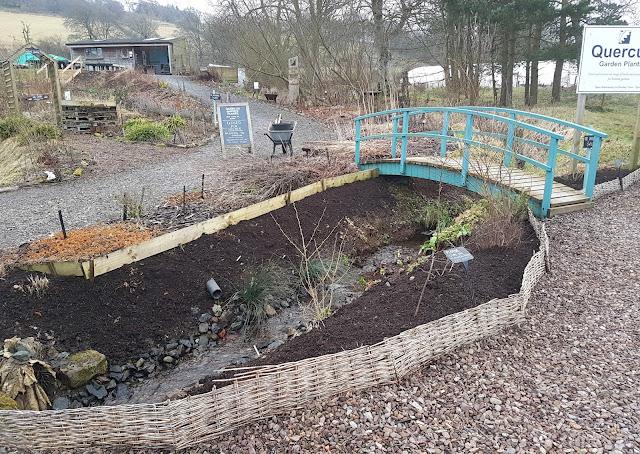 Tidying stream garden