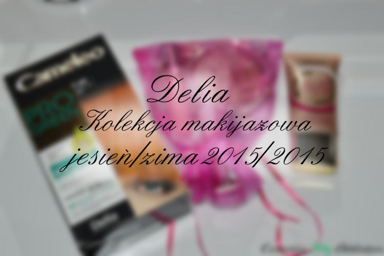DELIA | Kolekcja makijażowa jesień/zima 2015/2016 + nowość fluid All Day Perfect 3w1