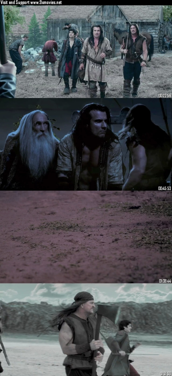 Vikingdom 2013 Dual Audio Hindi 480p BluRay 350MB
