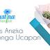 Cliantha Bunga penyedia Bunga terlengkap