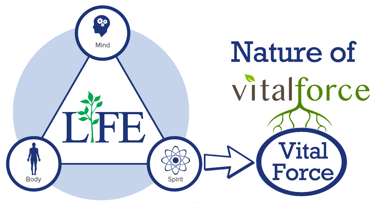 Nature of Vital Force