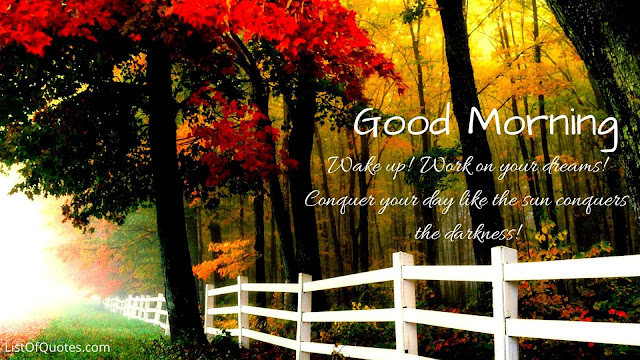 Beautiful Good Morning Nature with Quotes Messages For Friends Family(HD Images)