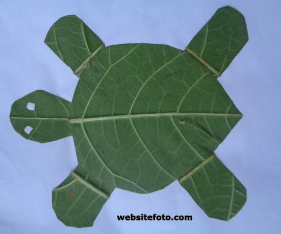 Mozaik kura-kura dengan daun basah