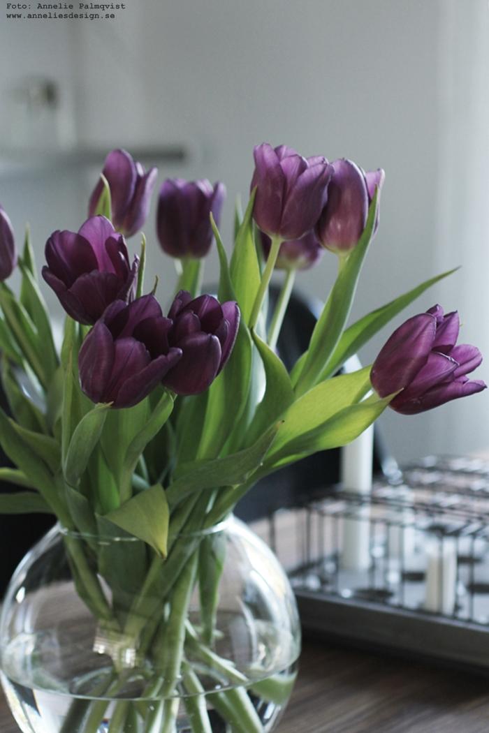 annelies design, webbutik, webshop, nätbutik, nettbutikk, inredning, tulpan, tulpaner, blommor, lila, stumpastake, stumpastaken, ljusstake, ljusstakar, inredning,
