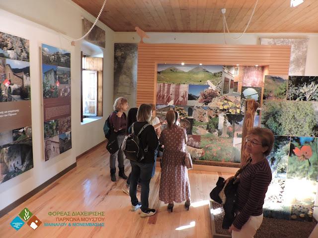 Περιβαλλοντική ενημέρωση επισκεπτών στην 36η Γιορτή Κάστανου στην Καστάνιτσα Αρκαδίας