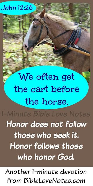 This Horse Pulls the Cart - God honors those who honor Him