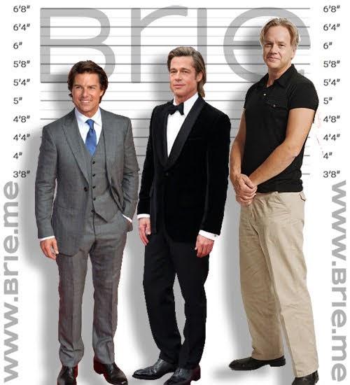 Tom Cruise, Brad Pitt, and Tim Robbins height comparison