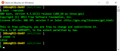 Screenshot of WSL showing bash version and uname of Linux