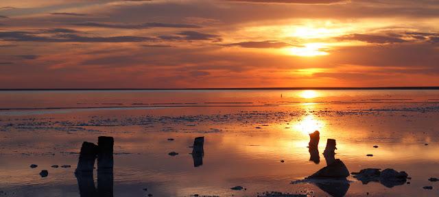 Si las emisiones de efecto invernadero continúan aumentando, para mediados de siglo las temperaturas promedio de verano podrían ser hasta 4,5 grados más altas.UNESCO/A. Popov