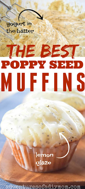 poppy seed muffin collage
