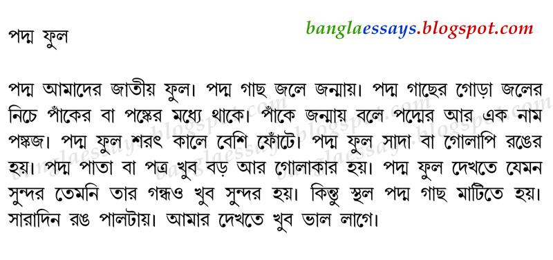 পদ্ম ফুল - Bangla Essay on Lotus Flower | Bangla
