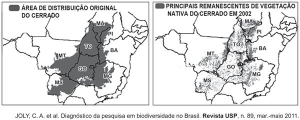 principais remanescentes de vegetação nativa do cerrado em 2002