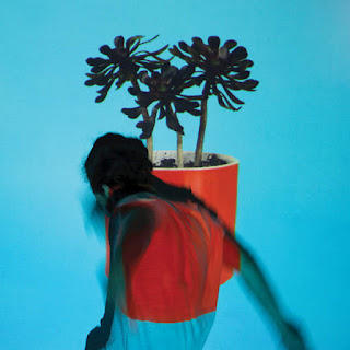Local Natives - Sunlit Youth (2016) - Album Download, Itunes Cover, Official Cover, Album CD Cover Art, Tracklist