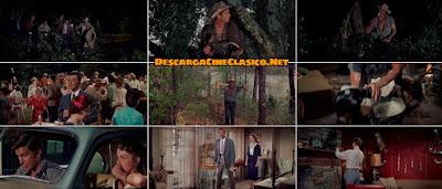Con él llego el escándalo (1960) Home from the Hill - Descargar